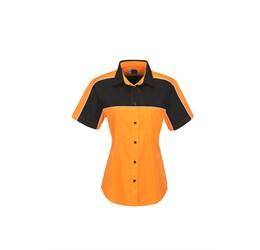 Ladies Daytona Pitt Shirt  Orange Only